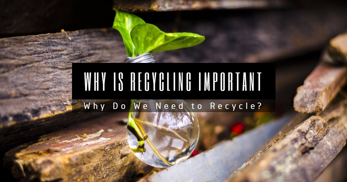 recycling is very important to the Collecting your cans for recycling is an important step you can take to help the environment saving energy people often think of aluminum as a cheap and plentiful metal, but 130 years ago .